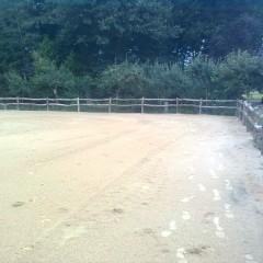 Paardenbak omheining van robinia hout.